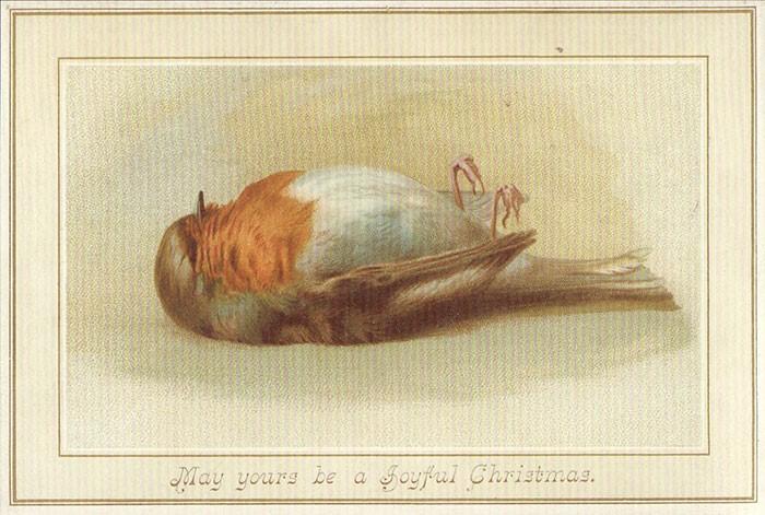 Птица замерзла