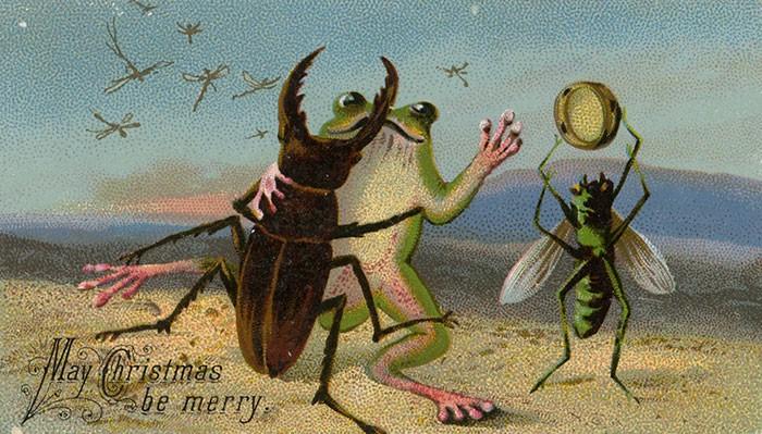 Танцующий жук